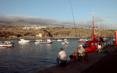 Tenerife és a munkamorál – útinapló 2. rész